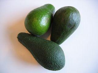 Avocats 002