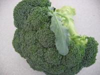 Broccoli_002